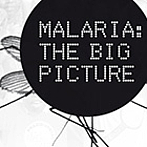 Malaria - The Big Picture