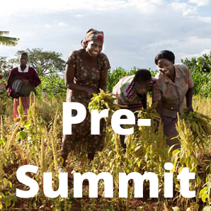 Strengthening food systems transformation through agroecology