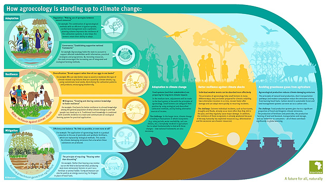 Infographic Agroecology against Climate Change