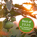 Best of 2020: The 5 most popular stories of Biovision - part 3